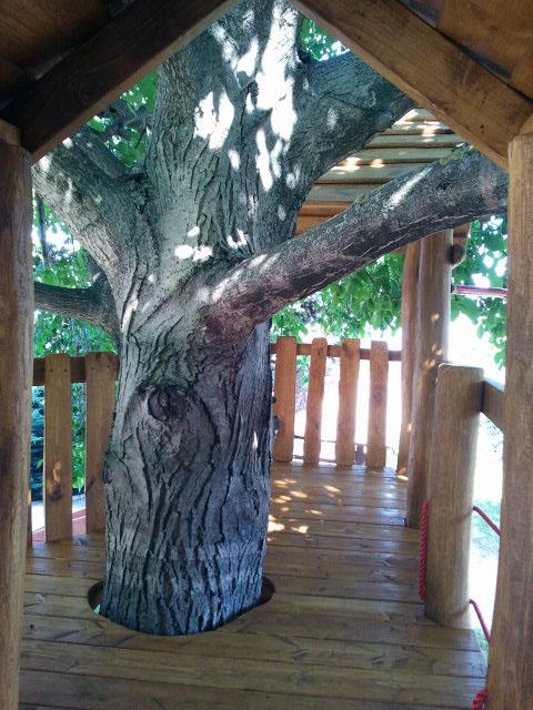 magánkerti megrendeléseink között gyakori a fa köré épített akác játszótér